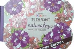 2016-09-01 - 100 Creaties Flowers