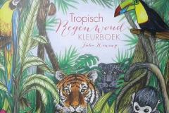 2017-04-17 - Tropisch regenwoud