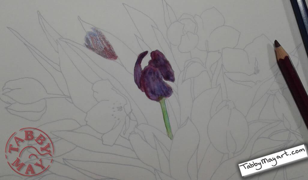 Review Tulpen aquarelleren lenteboeket eerste opzet