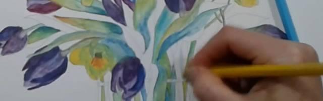How to work with Albrecht Dürer watercolor pencils
