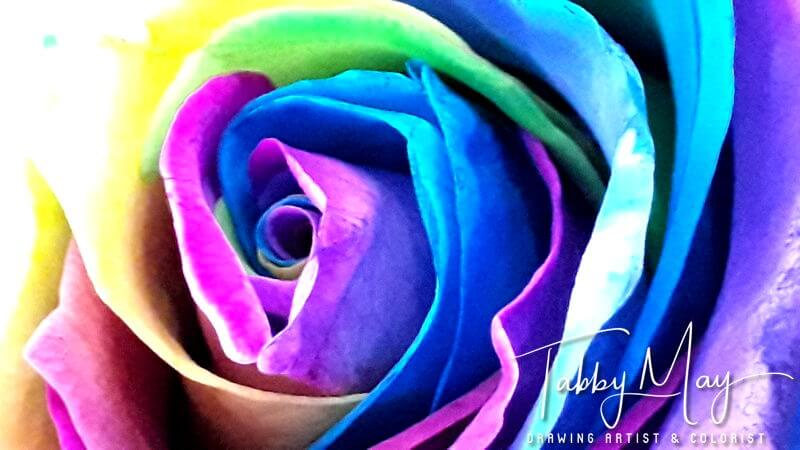 08 - artificially multi colored roses