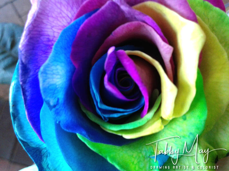 09 - artificially multi colored roses
