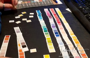 First lay out all the colors as they are on the chart I've already made...